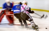 Haringey Huskies vs Basingstoke Buffalo Jan 2017
